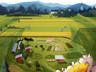 'The Knoll' at Middlebury College mountains farm cows flowers knoll illustration landscape middlebury