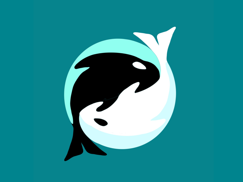 Whale yin yang illustration vector procreate yin yang canada bc vancouver island animal nature killer whale orca whale
