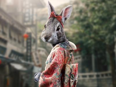 Japanese Rabbit Girl