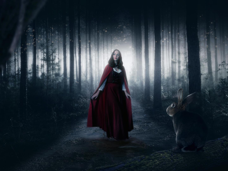 Red Riding Hood graphic design artwork manipulation animal composing manipulating photoshop digital imaging