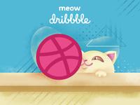 Hello Dribble (meow)