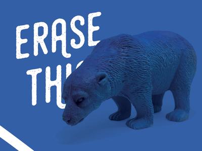 Erase This - The Polar Bear