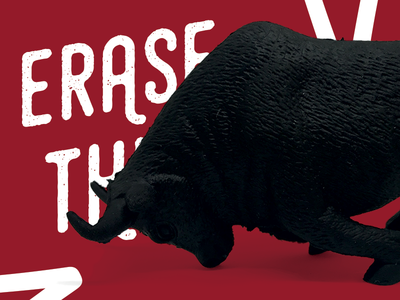 Erase This - The Bull