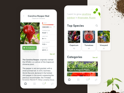 Plant Strains Selection catalogue category ios strain capsicum flower vegetable reference ux ui botany botanic growing gardening mobile app
