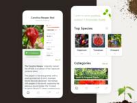 Plant Strains Selection
