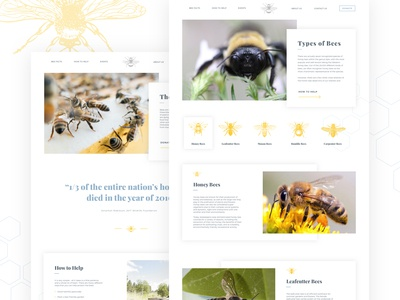 Save the Bees desktop (set 2/2)