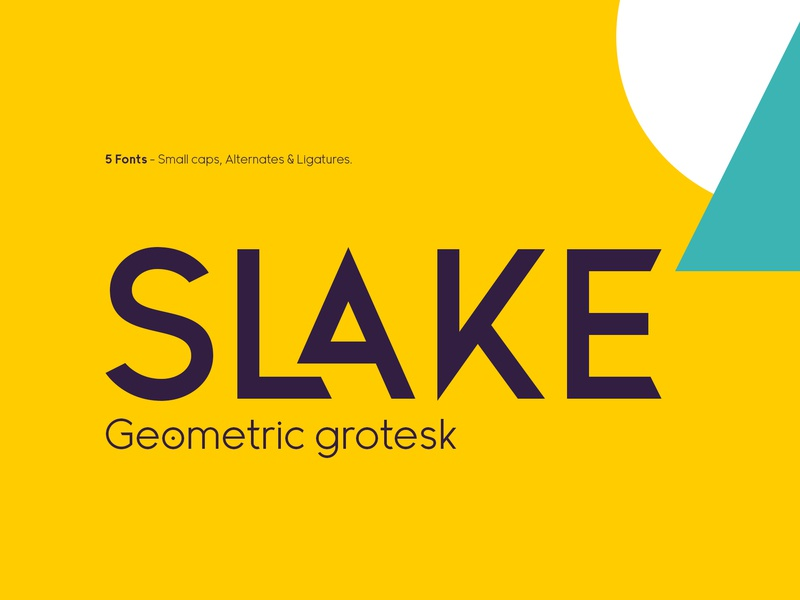 Slake Typeface illustration lettering web app icon ux branding ui vector design logo letter typeface type font typography