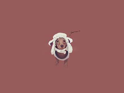 Bailey Sketch procreate design dogs