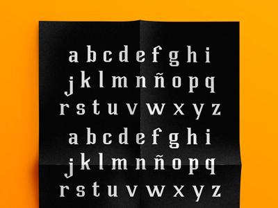 Plank Typeface typerlover type typography