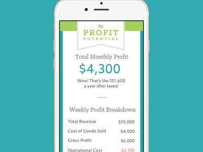 Business Boutique Profit Potential Tool