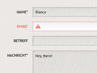 Contact Form form contact error