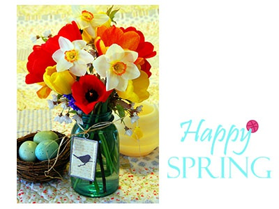 Welcome spring; hello Dribble!
