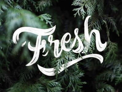 Fresh Lettering procreate letter lettering goodtype branding brand typography