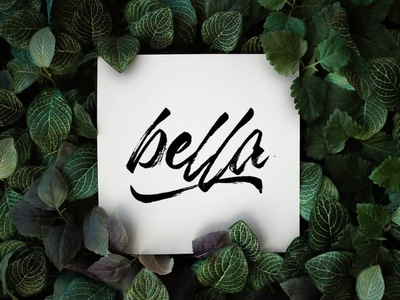 the name of beauty procreate letter design lettering goodtype brand branding typography