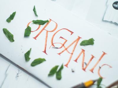 Hand Lettering Organic