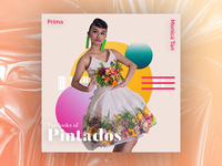 The Looks of Pintados