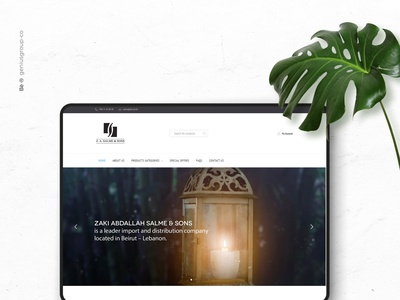 Salme & Sons Web Design brand website illustration ux ui logo illustrator identity design branding