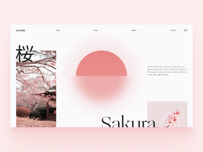 Sakura Website webdesign web flower clean color typography minimal japan uiux ux ui
