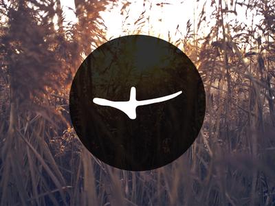 Secret project logo branding