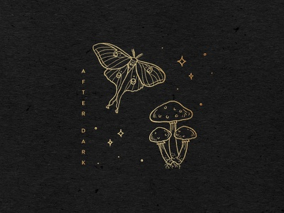After Dark hand drawn magic midnight nature forest stars mushroom moth tattoo minimal line illustration