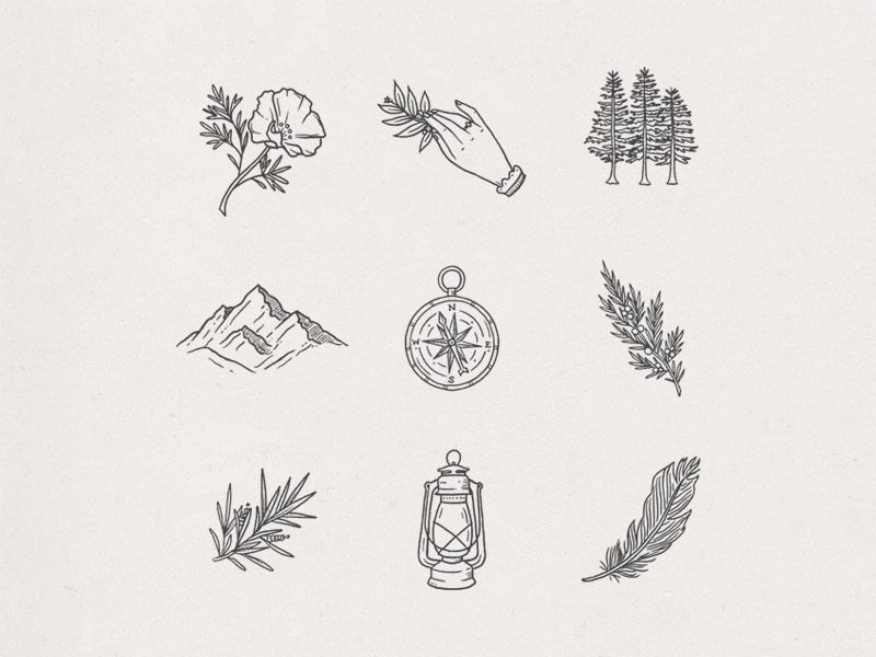 Wanderlust Icons feminine mountains branch lantern feather compass trees nature adventure icons illustration hand drawn