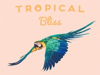 Tropical Bliss Cover