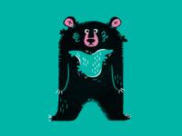 A   asiatic black bear