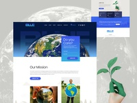 Website Design and Development BLUE
