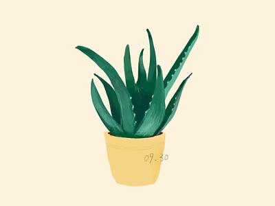 daily practice_Photoshop_ Green plants illustration