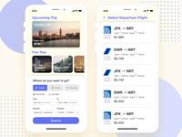 Travel Flight Concept