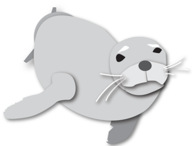 Monk Seal illustration