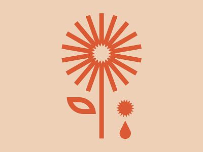 Flower Sun graphic graphic design illustration design sun flower sunflower sunset sunrise sunny flowers illustration flower logo flowershop sun flower sun flower illustration flowers flower