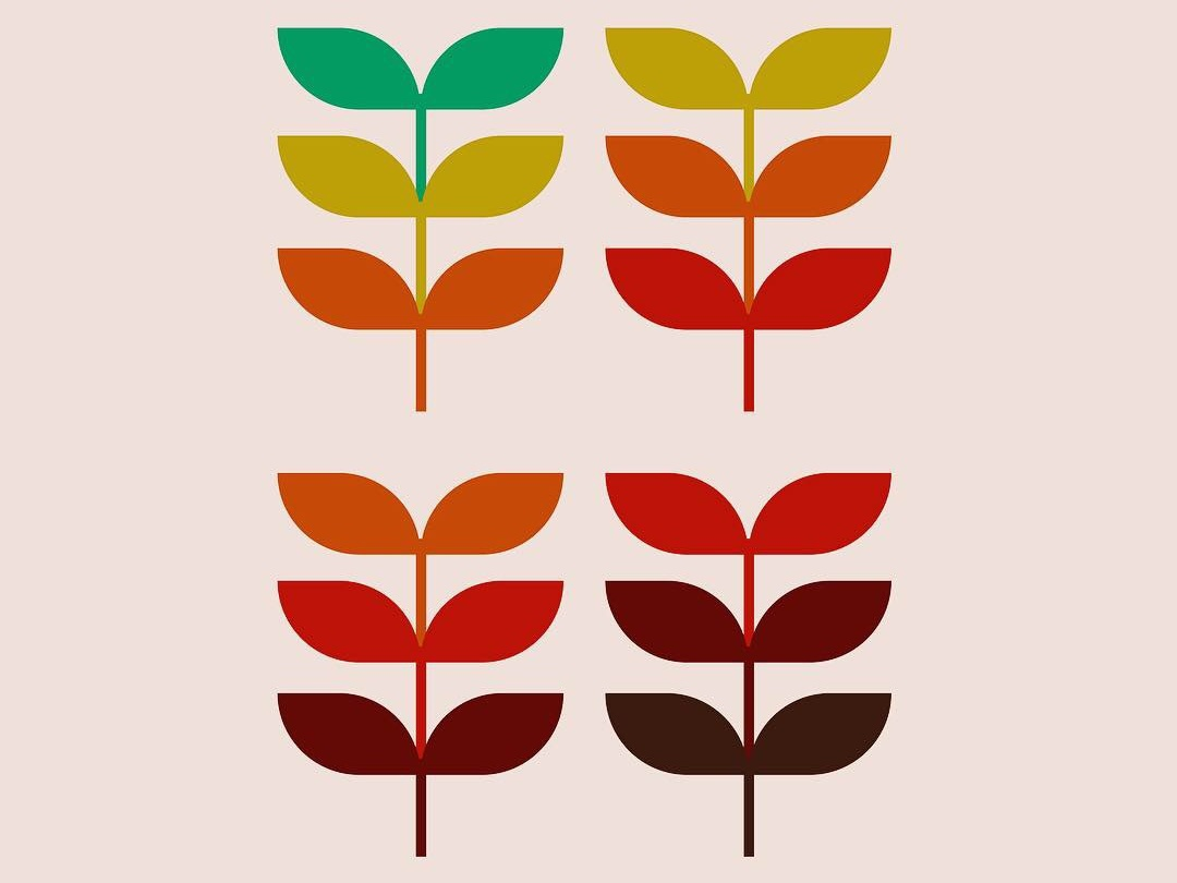 Fall leaves plant fall leaf graphic illustration design illustration leaves