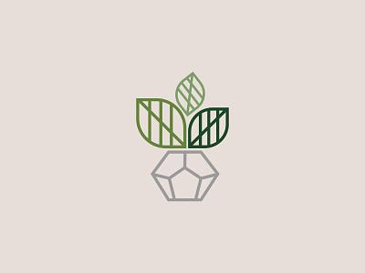 Plant in pot illustration design graphic plant illustration green plant pot