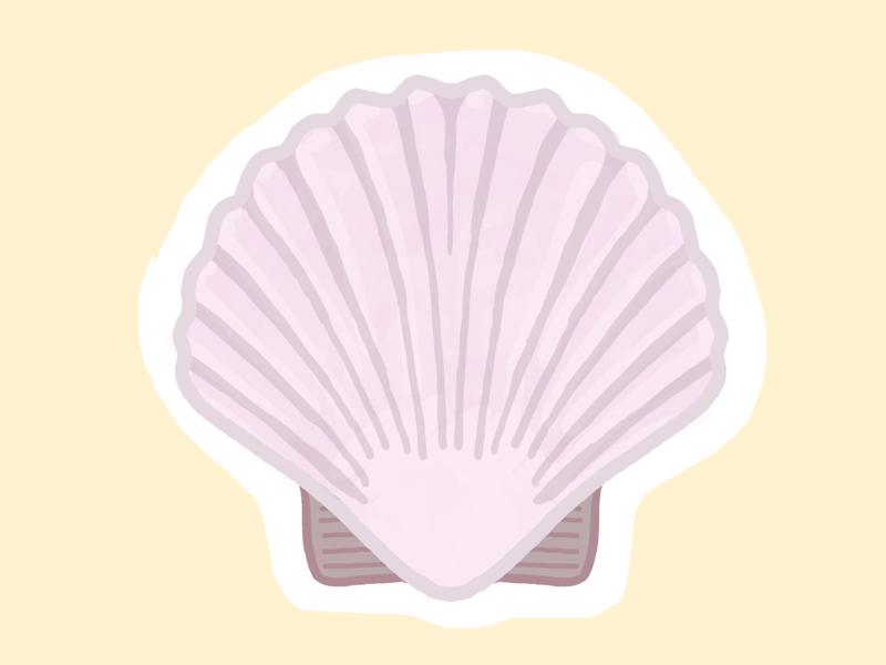 Seashell (12/100 days) procreate 100dayschallenge 100daysproject