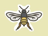 Bee (24/100 days)