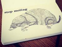 sketchbook mole illustration