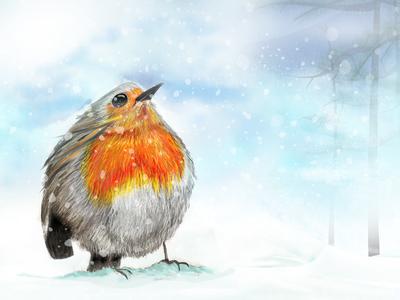 Snow Redbreast
