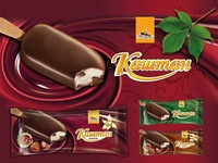 Kashtan Design ice cream