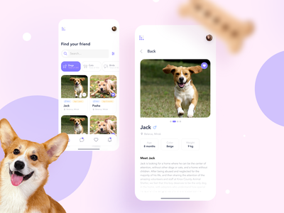 Adopt Me animals adoption adopt cat dog ux design ui web webdesign ui  ux