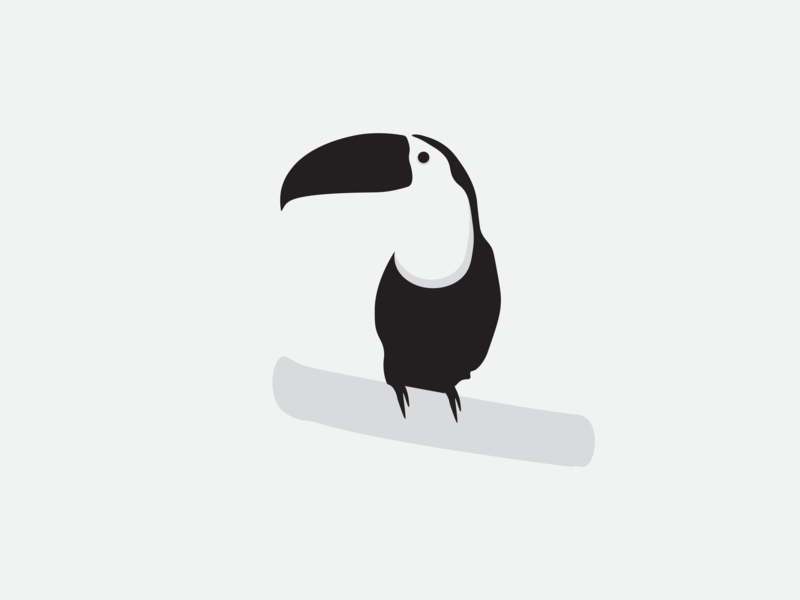 Toucan black and white black  white black bird icon bird toucan art vector minimal illustration