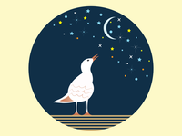 Bird at night