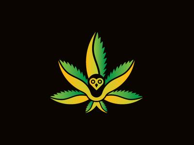Cannabis Owl Logo medicare healing nature weed wings hemp leaves love bug ganja bird branding illustrator logo cafe edibles shop marijuana cannabis owl logo cannabis logo