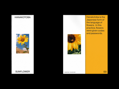 Hanakotoba - The Sunflower 1/2 editorial white space typography concept design japanese hanakotoba flowers layout type magazine sunflower print zine