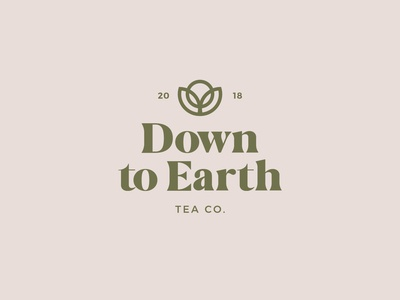 Down To Earth Logo - Light