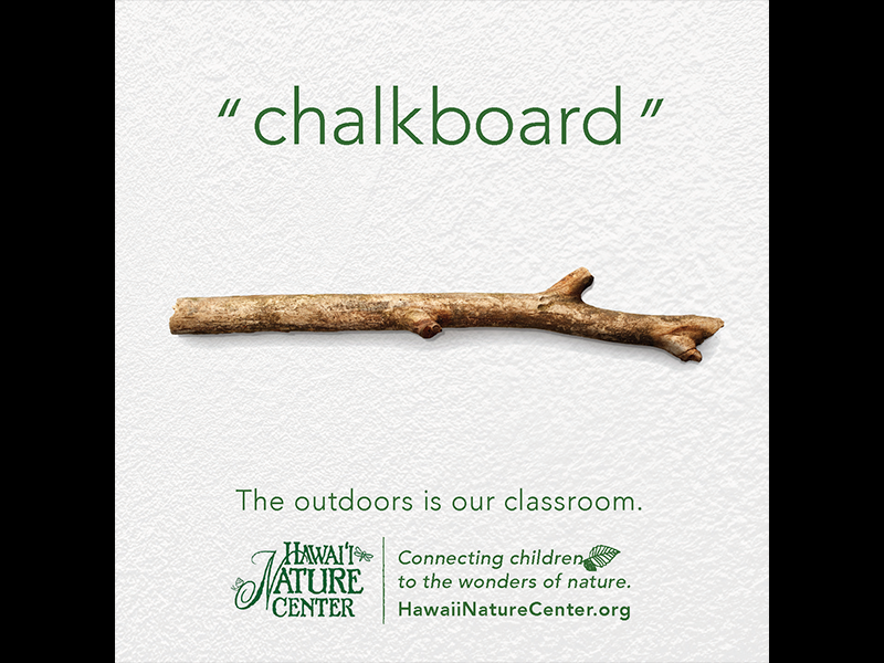 chalkboard growth nature wonder learning classroom wasiswas youth kids children forest outdoors hawaii hawaii nature center