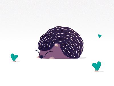 Porcupine/Hedgehog