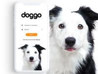 DOGGO - Log in screen