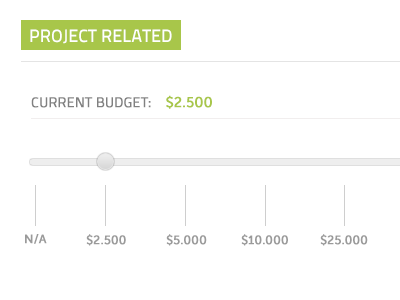 Current Budget slider ui design interface web