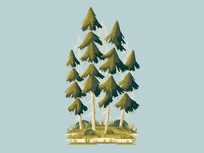 A couple of Pine Trees plants wacom cintiq outdoors illustration digitalartist wacom trees pinecone pine tree nature forest photoshop